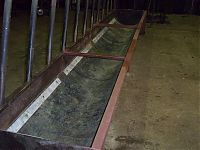 Cattle feeding troughs repaired